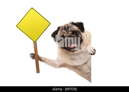 smiling pug puppy dog holding up blank yellow warning, attention sign, isolated on white background - Stock Photo