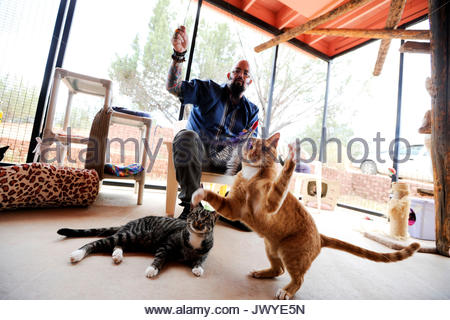Utah kanab best friends animal sanctuary kennel resident for Jackson galaxy music