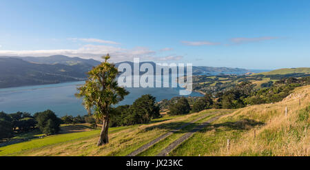 Coastal landscape, Otago Harbor, Otago, South Island, New Zealand - Stock Photo