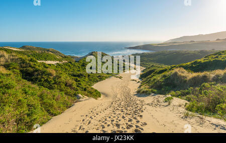 Coastal landscape with sand dunes, Sandfly Bay, Otago, South Island, New Zealand - Stock Photo