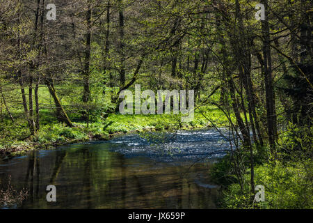 A hike in Altensteig, in the northern black forrest in the early spring along the river Nagold - Stock Photo