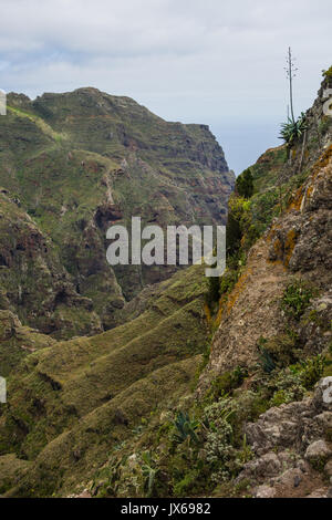 Hiking trip in the Anaga Mountains near Taborno on Tenerife Island with a lot of wide views over the sea and the - Stock Photo