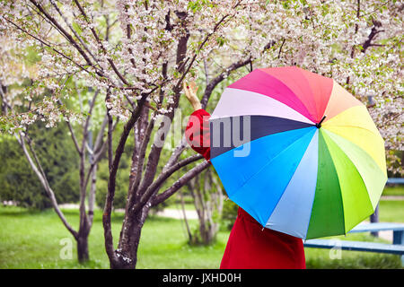 Woman in red coat with rainbow umbrella touching blooming tree in the park - Stock Photo