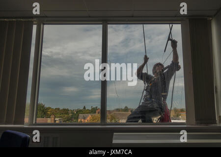 Men cleaning office windows at great height - Stock Photo