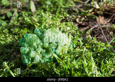 Green gemstone mineral on grass - Stock Photo