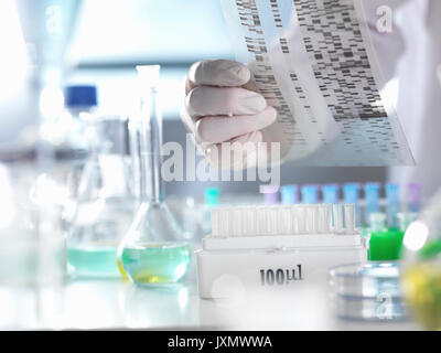 Scientist viewing a DNA gel during an experiment in the laboratory