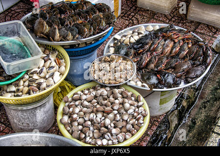 Snail's and crabs for sale in an open air market in Hanoi,  Vietnam. - Stock Photo