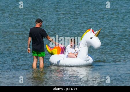 Weymouth, Dorset, UK. 17th Aug, 2017. UK Weather. A dad preparing an inflatable unicorn for his daughter before - Stock Photo