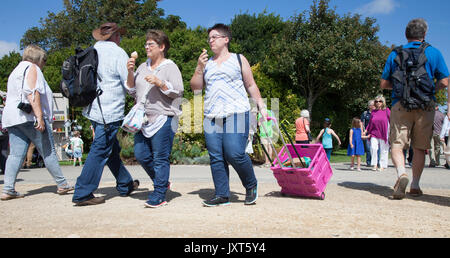 Southport, Merseyside, UK. 17th Aug, 2017. Opening day at Southport Flower Show as exhibitors, garden designers, - Stock Photo