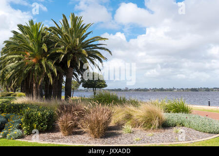 Banks of the Swan river in Perth, Western Australia - Stock Photo