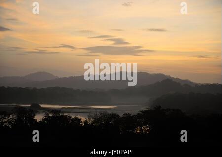 Sunrise View over Jungle Canopy & Gatun Lake, Panama, Central America, Gamboa Reserve, Parque Nacional Soberania, - Stock Photo