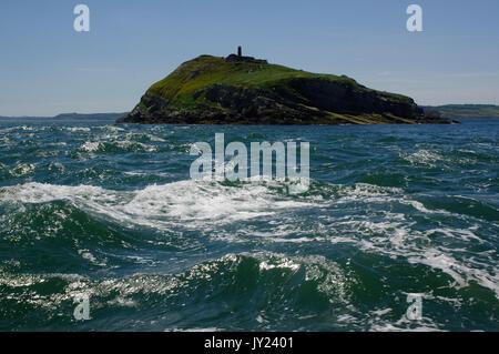 Puffin Island - Stock Photo