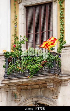 Upper floor apartment in Barcelona has a terrace filled with summer foliage as well as showing Catalonian pride - Stock Photo