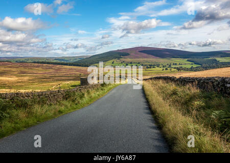 Views of the Yorkshire Dales with heather capped hills and stunning quiet country lanes, Barden, England, UK - Stock Photo