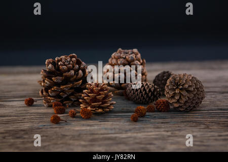 pine cones color books pine cones on wooden table stock photo royalty free image