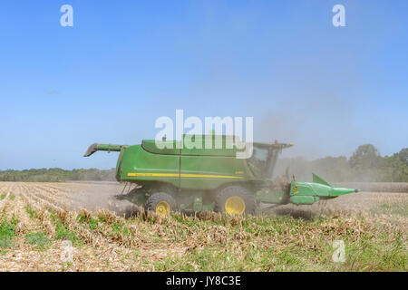 John Deere S550 combine harvester is cutting old harvested corn stalks to ready the field for next year's crop on - Stock Photo