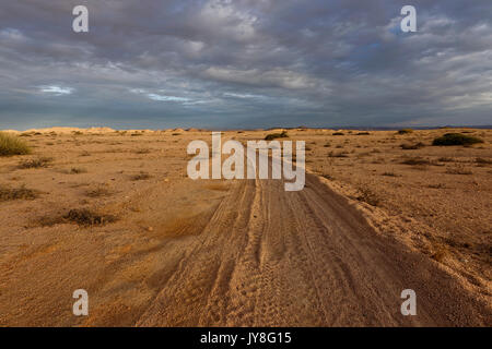 Farm Wüstenquell (Wuestenquell Guest Farm): Sandy road in Namib Desert, Distrikt Karibib, Namibia - Stock Photo