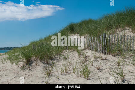 Sand Dune Erosion Fence:  A wooden picket fence holds wind-blown sand and allows grass to take root in dunes on - Stock Photo