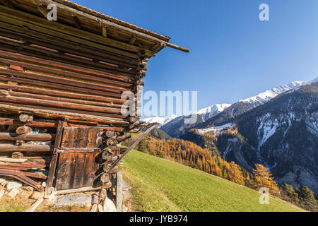 Wooden cabin surrounded by colorful woods and snowy peaks Schmitten Albula District Canton of Graubünden Switzerland - Stock Photo
