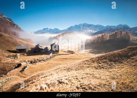 Morning fog on the mountain huts of Buaira framed by snowy peaks Sils Maloja Canton of Graubünden Engadine Switzerland - Stock Photo