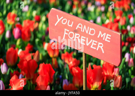 Wooden sign in the fields of red tulips in bloom Keukenhof Botanical garden Lisse South Holland The Netherlands - Stock Photo