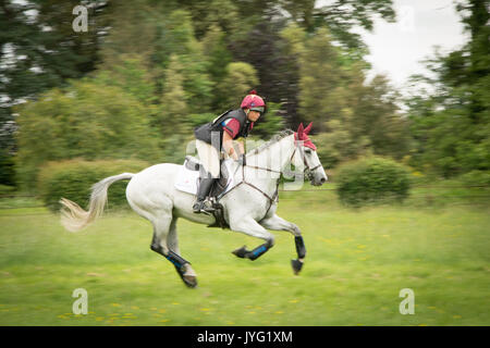 A rider gallops during a horse race in Somerset, UK - Stock Photo