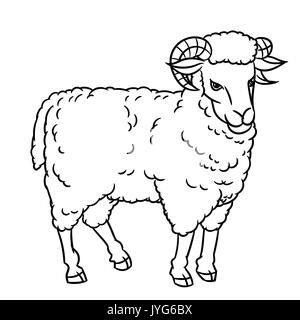 sleeping sheep coloring pages - photo#16