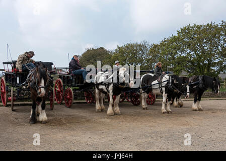 A row of horse drawn carriages for hire on Harbour Hill, waiting for visiting tourists for rides around the Isle - Stock Photo