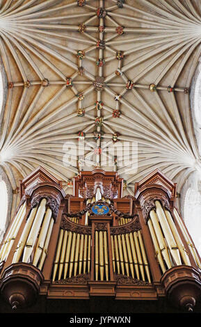 A view of the vaulting and bosses on the ceiling of the nave with organ loft in Norwich Cathedral, Norfolk, England, - Stock Photo