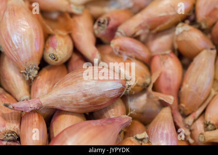 Lots of shallot on a market stall. Seen in Macro. - Stock Photo