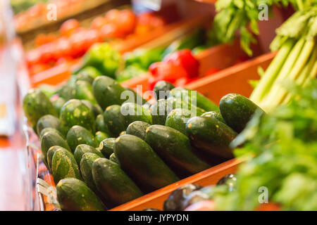 Lots of zucchini on a market stall. These are green vegetables and very good for health. - Stock Photo