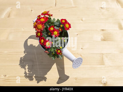 nice ewer with flowers and shadow - Stock Photo
