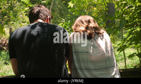 A young couple in sun and shadows in the woods from behind - Stock Photo