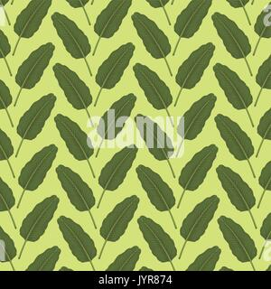 pattern color set decorative of green leaves plant with branches - Stock Photo