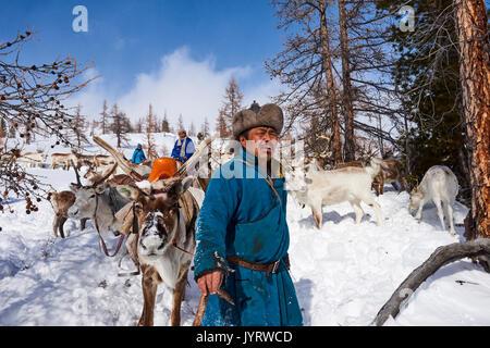 Mongolia, Khovsgol privince, the Tsaatan, reindeer herder, winter migration - Stock Photo