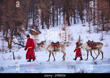 Mongolia, Khovsgol privince, the Tsaatan, reindeer herder, winter migration, crossing a frozen river - Stock Photo