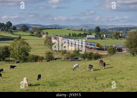 2 Transpennine Express class 185 trains pass  Rowell (between Carnforth & Oxenholme on the west coast main line) - Stock Photo
