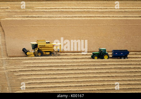 A combine harvester working in a wheat field near North Berwick East Lothian. - Stock Photo