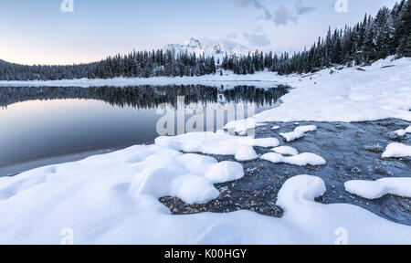 Woods and snowy peaks are reflected in Palù Lake at dusk Malenco Valley Valtellina Lombardy Italy Europe - Stock Photo