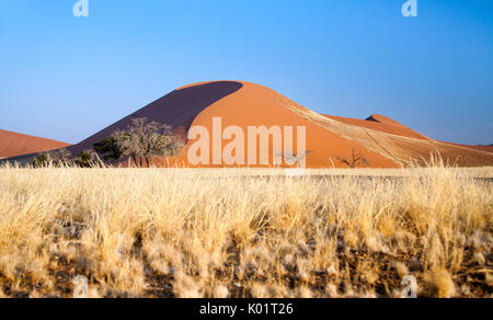 Dune 45 the star dune composed of 5 million year old sand Sossusvlei Namib Desert, Naukluft National Park,  Namibia, - Stock Photo