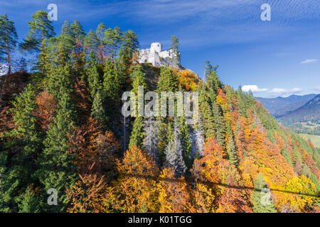 View of the old Ehrenberg Castle surrounded by colorful woods in autumn Reutte Austria Europe - Stock Photo