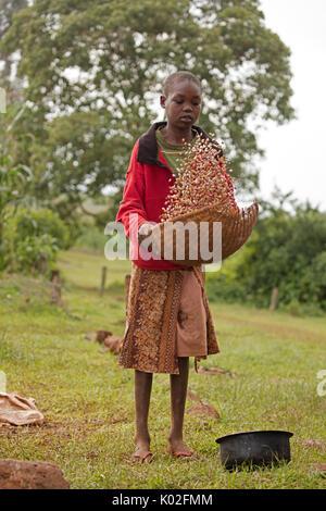 Girl winnowing beans, Kenya - Stock Photo