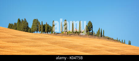 Beautiful typical panorama landscape of Val d'Orcia in Tuscany with a row of cypress trees in summer, Val d'Orcia, - Stock Photo