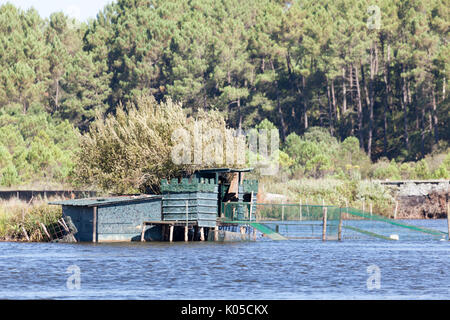 In Summer, a duck hunting hut on the Pond of Hardy, at Seignosse (Landes - France). There are around about a dozen - Stock Photo
