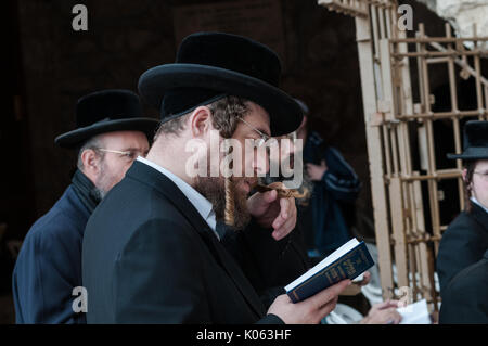 Ortxodox Jew, a member of Hasidism devoutly prays at the Wailing Wall in Jerusalem - Judaism's holy site. - Stock Photo