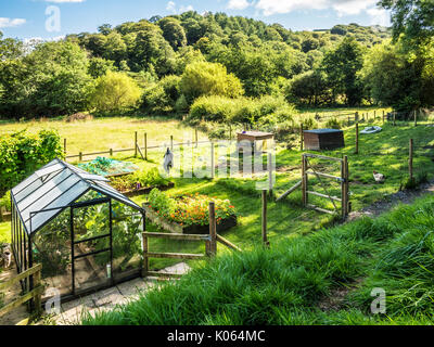 A small vegetable garden and chicken run in Somerset. - Stock Photo