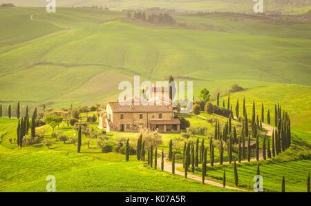 Podere Baccoleno, Asciano, Crete senesi, Tuscany, Italy - Stock Photo