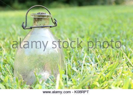 Vintage Glass Bottle - Stock Photo
