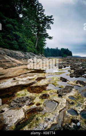 Tide pools at Botanical Beach Juan de Fuca Provincial Park shoreline scenery, Port Renfrew, Vancouver island, British - Stock Photo