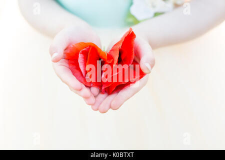 nature, flora, tenderness, childhood, childcare - close-up of little tender palms of child holding few bright scarlet - Stock Photo